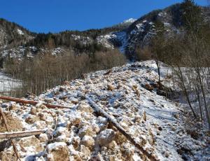 Sistemazioni idraulico forestali
